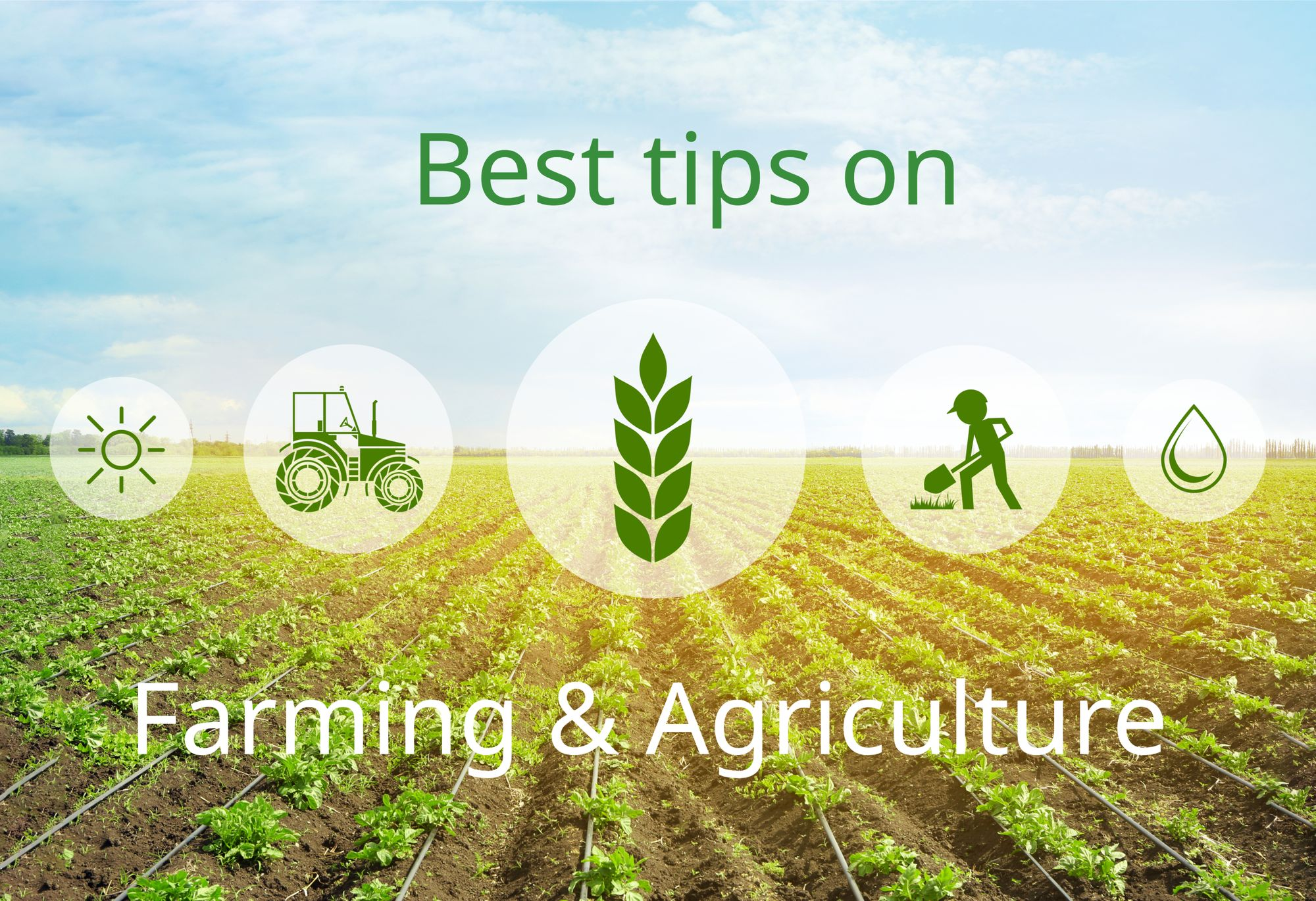 Best Tips To Get Started With Farming And Agriculture