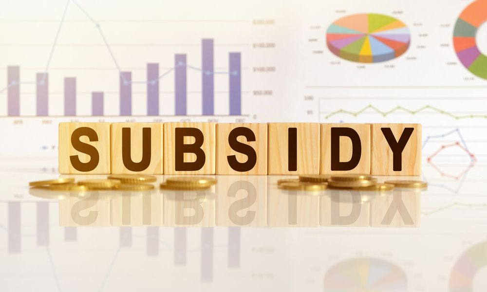 Different Subsidies that You Can Avail for MSME