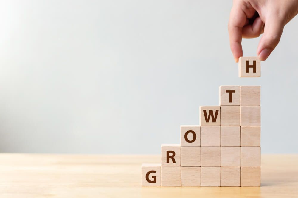 Tactics and Strategies for Your Growing Organisation