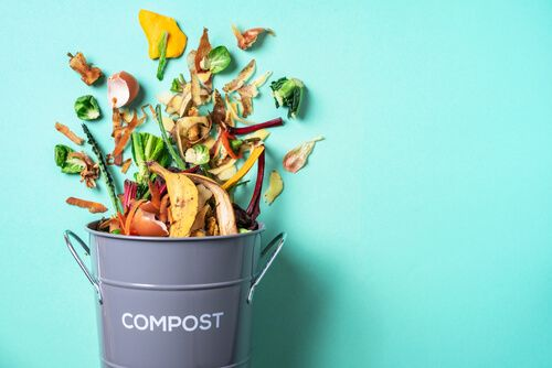 How to Start a Composting Business in Easy Steps?