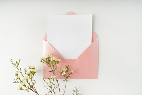 pink envelope, white blank card and a wax flower on a white background