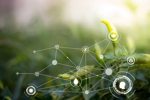 Smart technology with Internet of things futuristic agriculture