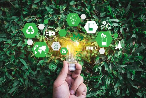 Top 6  Business Sustainability Strategies and Solutions