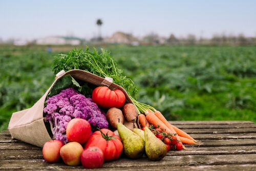 bag filled with vegetables and fruits in a crop field