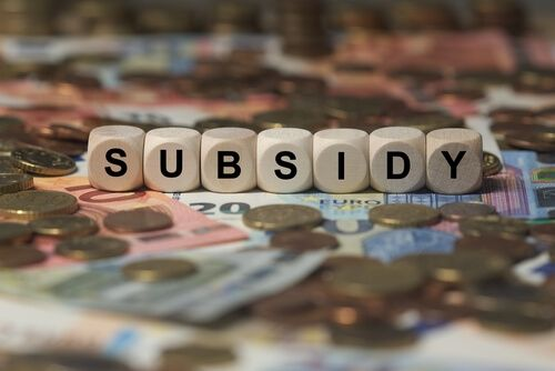 subsidy - cube with letters, sign with wooden cubes